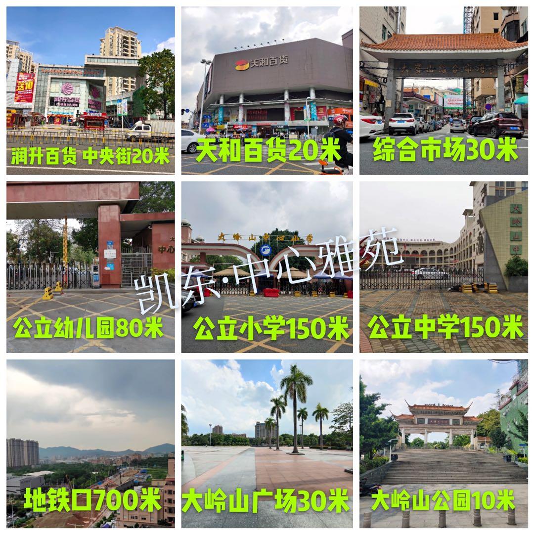 大岭山凯东小产权房《中心雅苑》双阳台9.8万一套双地铁口